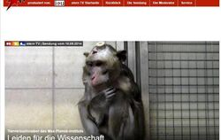 Screenshot der Website von Stern TV.