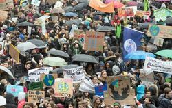 «Fridays for Future»-Demo in der Düsseldorf