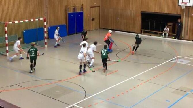 Hockey-Training in der Halle.  FOTO: ZMS