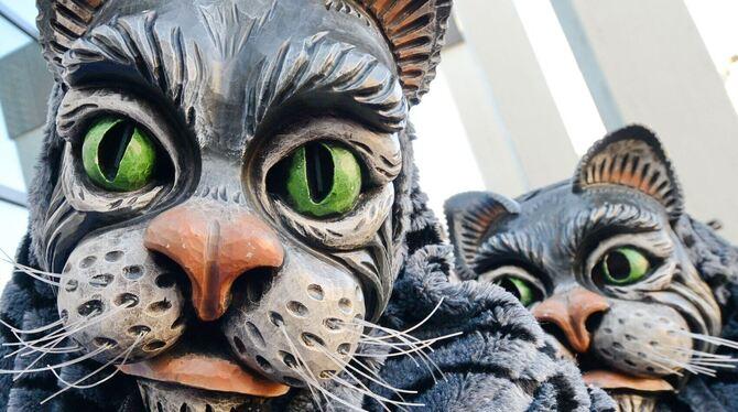 Auch die Mühla Katza wollen erst nächstes Jahr wieder in die Vollen gehen. FOTO: ARCHIV