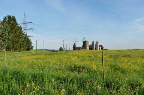 Eine scheune f r hobbylandwirte reutlingen reutlinger for Reutlinger general anzeiger immobilien